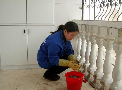 家政保洁服务
